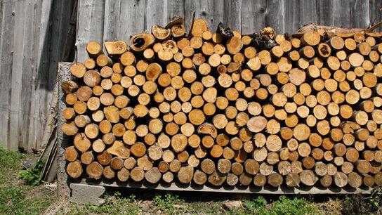Holz beim Trocknen