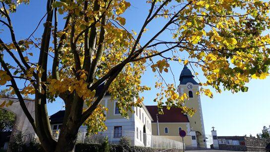 Waldenstein-Herbst.jpg