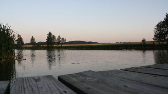 Schwimmteich bei Albrechts